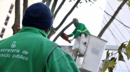 Tareas de mantenimiento y desinfeccion urbana
